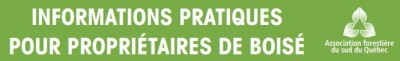 Informations pratiques pour les propriétaires de boisés